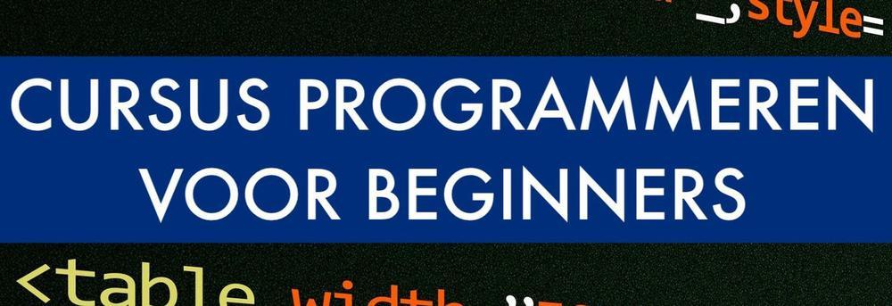 Programmeren voor beginners; bouw je eigen website voor je CV!
